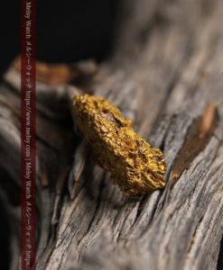 8.19gの複雑で多彩な表面の縦長の自然金-G0447-1