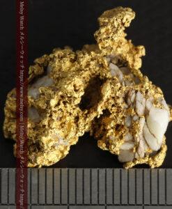 11.1gの海岸のカメノテのような石英を含んだ自然金-G0477-17