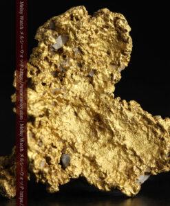 11.1gの海岸のカメノテのような石英を含んだ自然金-G0477-2