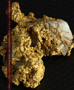 11.1gの海岸のカメノテのような石英を含んだ自然金-G0477-8