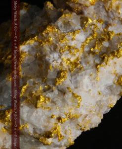 33.53gの雪化粧のような石英の結晶に覆われた美しい自然金-G0244-16