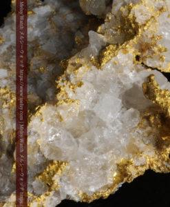 33.53gの雪化粧のような石英の結晶に覆われた美しい自然金-G0244-17
