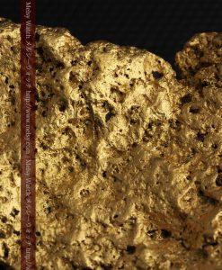 300g超えの博物館級の超大型自然金-g0250-33