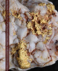 15.65gの大粒の金が見える大きなサイズの金鉱石-g0294-1