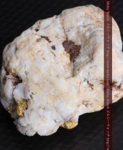 15.65gの大粒の金が見える大きなサイズの金鉱石-g0294-17