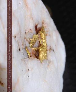 16.91gの大きな石英の中央に鎮座する自然金-g0298-2
