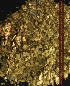 5.1gの小さな砂金・薄片金とやや粒の大きな自然金-G0312-1