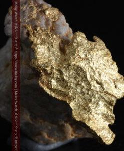 12.03gの非常に珍しいリーフ状のゴールドを冠した石英と自然金-G0327-1