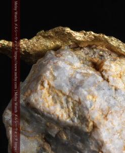 12.03gの非常に珍しいリーフ状のゴールドを冠した石英と自然金-G0327-5