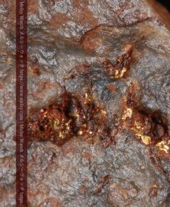 22.0gの黒褐色の石英と自然金-G0330-1
