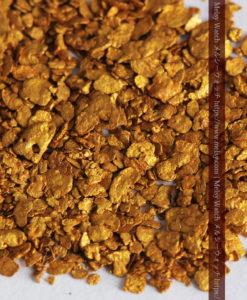 2.59gの小さな砂金・薄片金とやや粒の大きな自然金2点-G0336-6