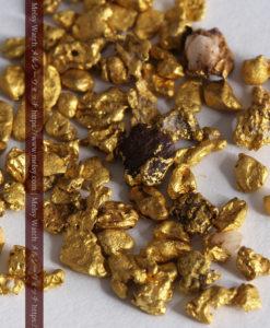 4.41gの小さな粒の自然金セット-G0341-5