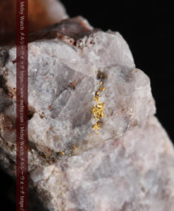 4.27gの石英とごくわずかに見える自然金-G0356-1