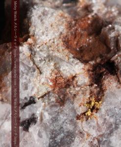 4.27gの石英とごくわずかに見える自然金-G0356-2