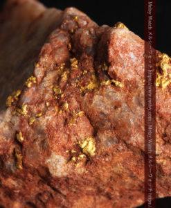 40gの大きな石英の中に20点以上広がる自然金-G0360-1