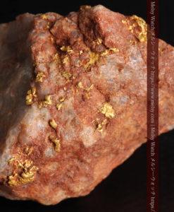 40gの大きな石英の中に20点以上広がる自然金-G0360-2