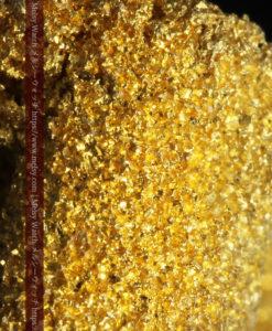 3.60gの砂金の集まりのような非常に微細・繊細な自然金-G0361-2