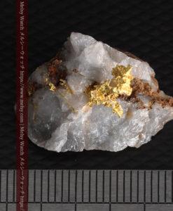 4.39gの石英から飛び出す立体的な自然金-g0386-13