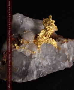 4.39gの石英から飛び出す立体的な自然金-g0386-5