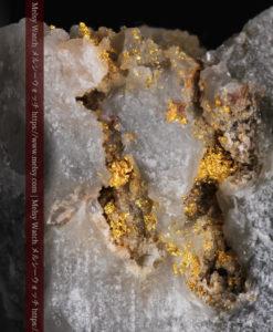 33.7gの大きな石英の谷間に走る綺麗な自然金-G0399-1