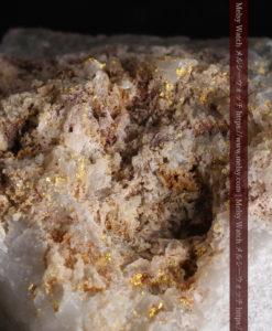 42gと大きめの石英の中に見える砂金のような自然金-G0401-1