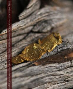 0.67gの非常に薄い面の大きな薄片金・自然金-G0426-5