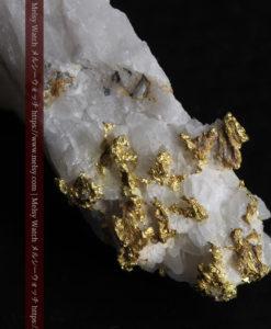 7.99gの大きな牙のような形の石英に見える粒状の自然金-G0432-1